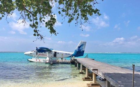 Maldivian ge pilotun thakeh  vazeefaa in vakivejje
